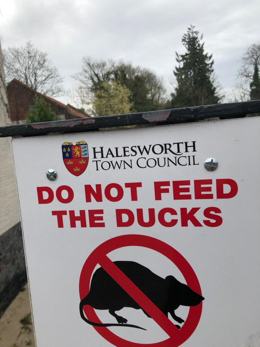 Halesworth Ducks