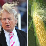Sweetcorn sues Trump over identity theft claim! 😀