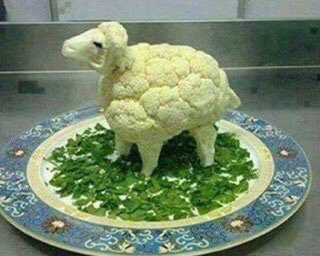 How to confuse a vegan 🙂