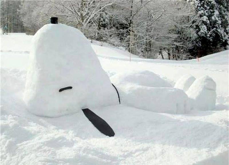 Famous snow dog ⛄️