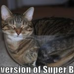 Cat version of Superbowl! 🐱