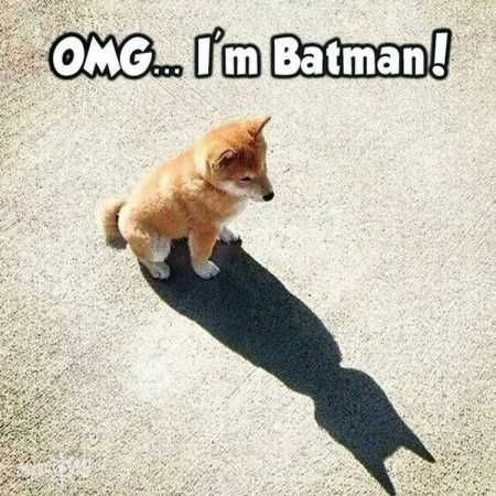 OMG - I'm Batman! Love it 😀