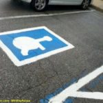 Tortoise parking spaces?