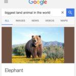 Nice one Google! 😀