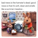 Poor hamster! 😀