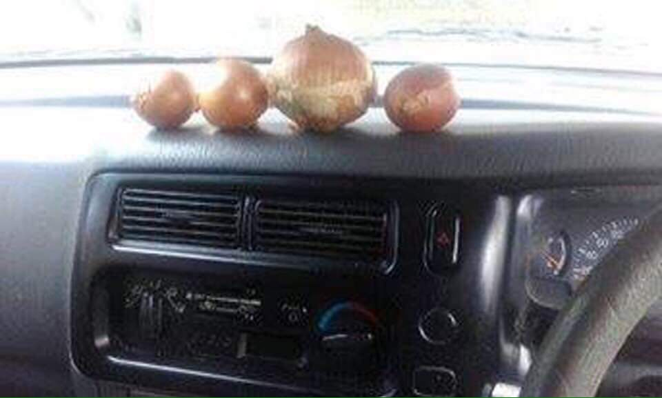 I've been meeting the car dash onions 😀