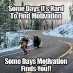 Sometimes motivation finds you! 😀