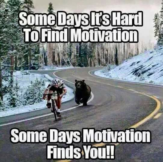 Sometimes motivation finds you! 😀 - Friday Fun