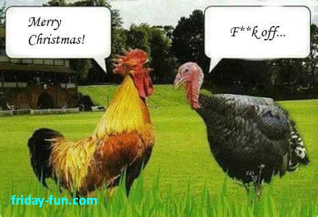 What did the chicken say to the Turkey? 😀