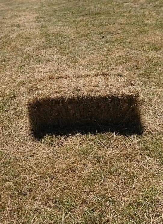 Acohol test: Do you see a hole or a haybale? 😀