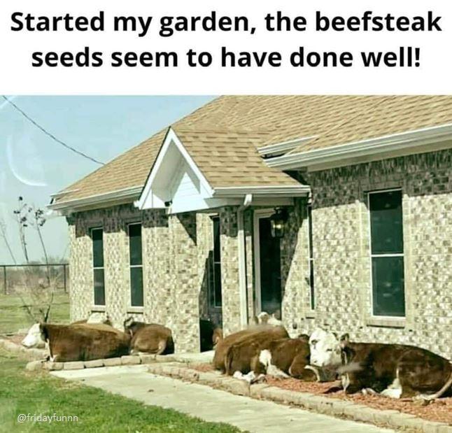 This gardening lark is fun huh? 😀