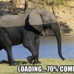 Loading .... 😀