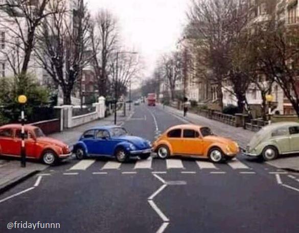 Beatles or Beetles? 😆